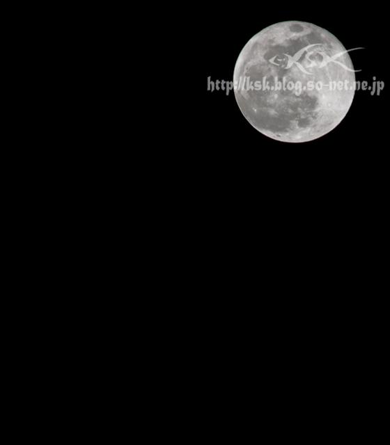 月-1.jpg
